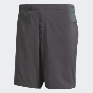 TERREX Trail Shorts Grey Five CZ0148