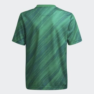 Camiseta primera equipación 20/21 Irlanda del Norte Verde Niño Fútbol