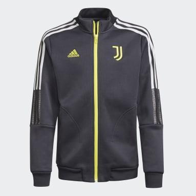 Casaco Anthem Tiro da Juventus Cinzento Rapazes Futebol