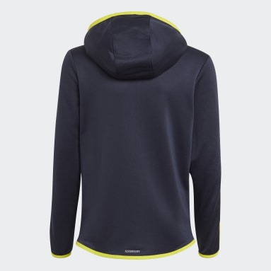 Boys Sportswear Blue Designed 2 Move 3-Stripes Hoodie