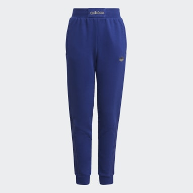 синий Брюки adidas SPRT