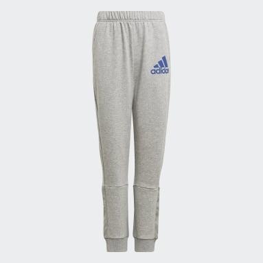 Boys Training Grey Badge of Sport Pants