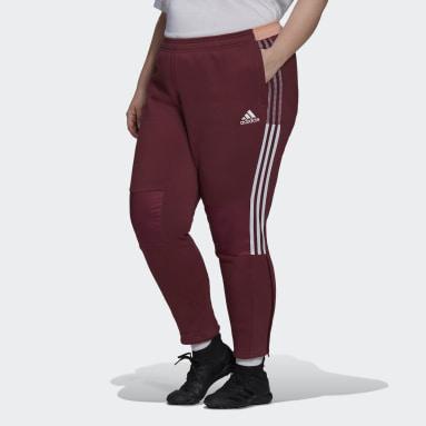 Women's Sportswear Burgundy Tiro Winterized Track Pants (Plus Size)