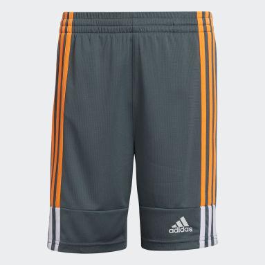 Youth Training Grey Clashing 3-Stripes Shorts