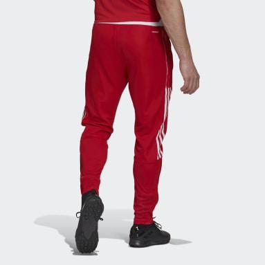 Muži Fotbal červená Tréninkové kalhoty Ajax Amsterdam Tiro