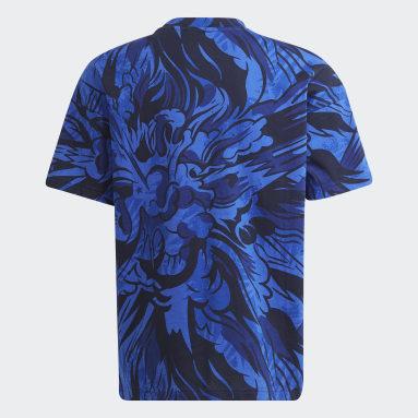 Boys Gym & Training Blue ARKD3 Graphic Tee