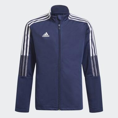 синий Спортивный костюм Tiro