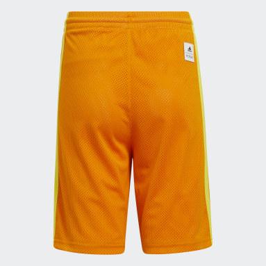 Kids Basketball Orange Big Kids George Sanderson Shorts