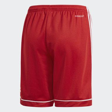 Pantalón corto Squadra 17 Rojo Niño Gimnasio Y Entrenamiento