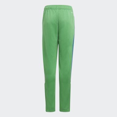 Youth Soccer Green Tiro Fading Pants