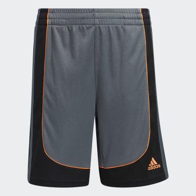 Youth Training Grey B-Ball Creator Shorts