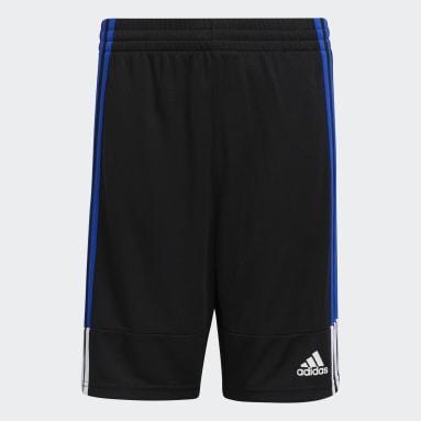 Youth Training Blue Clashing 3-Stripes Shorts