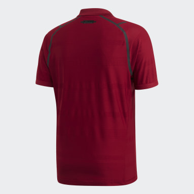 Men Tennis Burgundy MatchCode Polo Shirt
