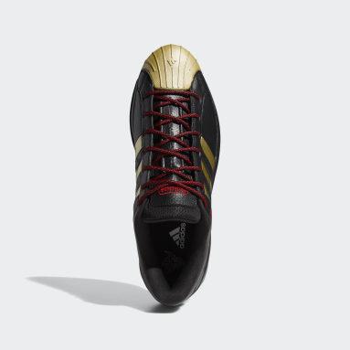 Basketbal Zwart Pro Model 2G Low Schoenen