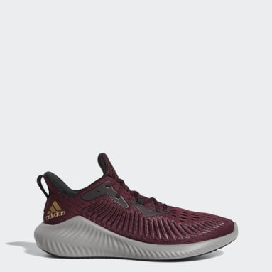 Training Burgundy Alphabounce+ Shoes