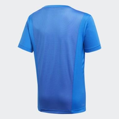 Jungen Fitness & Training Linear T-Shirt Blau