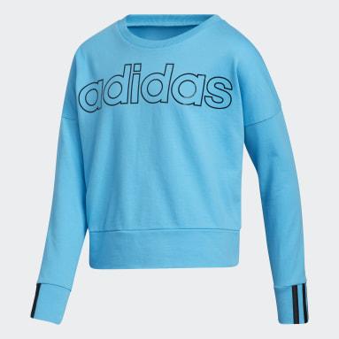Youth Training Blue 3-Stripes Pullover Sweatshirt