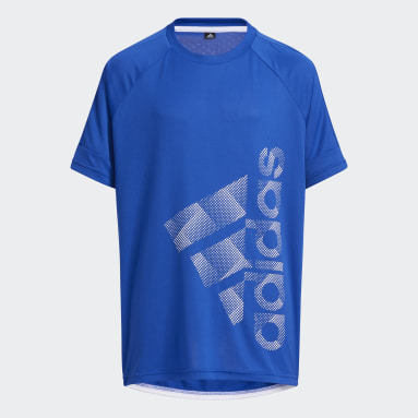 Boys Lifestyle Blue Badge of Sport Tee