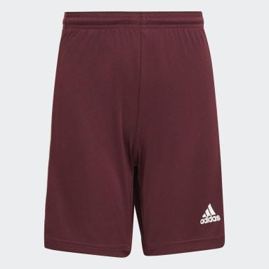 Boys Football Red Squadra 21 Shorts