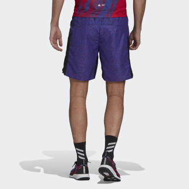 Men TERREX Purple Terrex Primeblue Graphic Trail Shorts