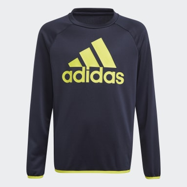 Blusa Moletom adidas Designed To Move Big Logo Azul Meninos Training