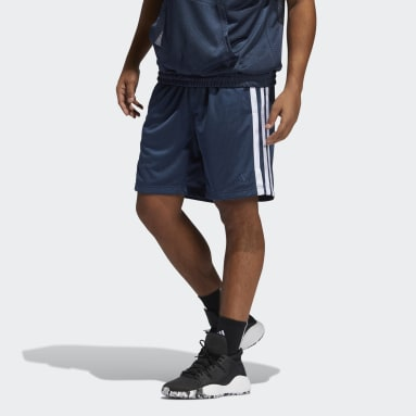 Mænd Basketball Blå Summer Legend shorts