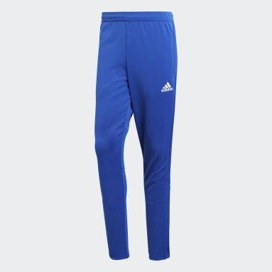 Muži Cvičení A Trénink modrá Kalhoty Condivo 18 Training Pants