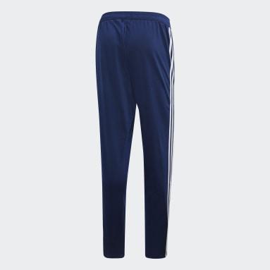 Men Gym & Training Blue Tiro 19 Polyester Pants