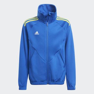 синий Олимпийка Predator