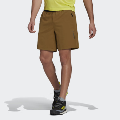 Men TERREX Brown Terrex Liteflex Hiking Shorts