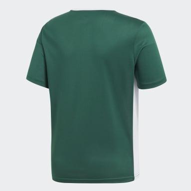 Camiseta Entrada Verde Niño Gimnasio Y Entrenamiento