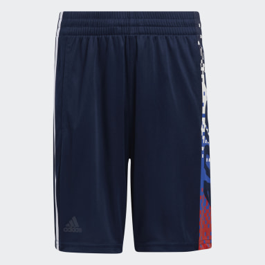 Youth Training Blue Gamescape Shorts