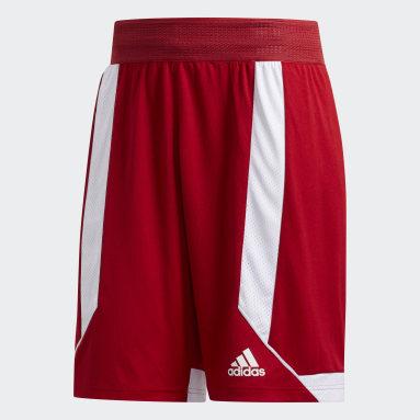 Heren Basketbal Rood Creator 365 Short