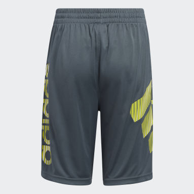 Youth Training Blue In Motion Shorts