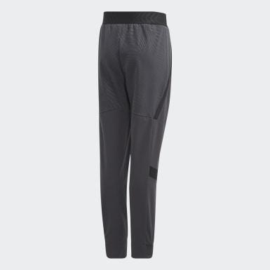 Youth Training Grey Nemeziz Pants