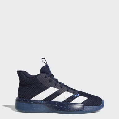Muži Basketbal modrá Obuv Pro Next 2019