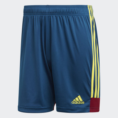 Männer Training Tastigo 19 Shorts Blau