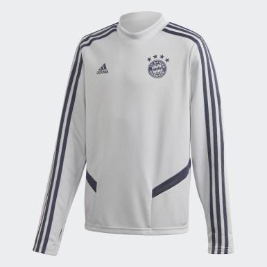 Camisola de Treino do FC Bayern München Cinzento Rapazes Futebol