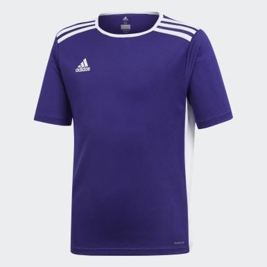 Camisa Entrada Roxo Meninos Futebol