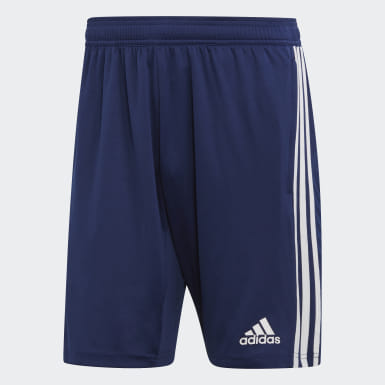 Men Training Blue Tiro 19 Training Shorts
