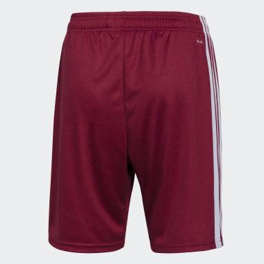 Shorts Uniforme de Visitante River Plate Burgundy Hombre Fútbol