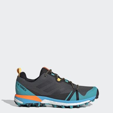 TERREX Grey Terrex Skychaser LT GORE-TEX Hiking Shoes