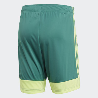 Men Training Turquoise Tastigo 19 Shorts