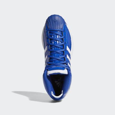 синий Баскетбольные кроссовки Pro Model 2G