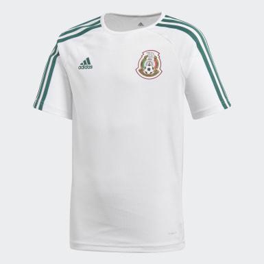 Playera Segundo Uniforme Selección Nacional de México Seguidores Blanco Niño Fútbol