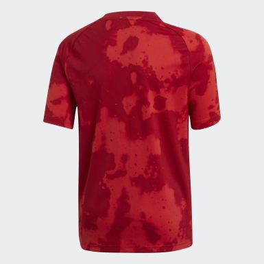 Camiseta calentamiento FC Bayern Rojo Niño Fútbol