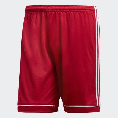 ผู้ชาย ฟุตบอล สีแดง กางเกงขาสั้น Squadra 17