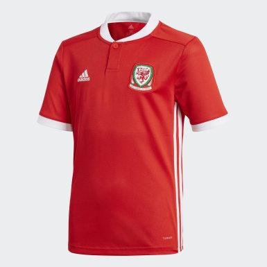 красный Домашняя игровая футболка сборной Уэльса