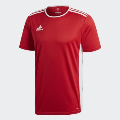 ผู้ชาย ฟุตบอล สีแดง เสื้อฟุตบอล Entrada18