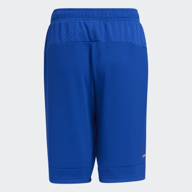 Boys Lifestyle Blue Badge of Sport Shorts